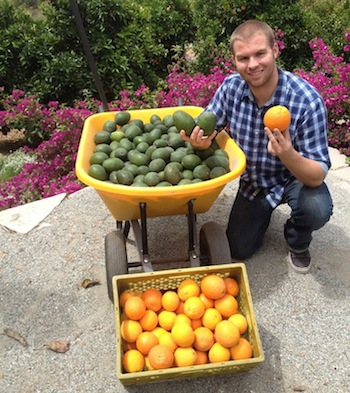 MIchael Johnson of Coronet Corner Grove in Riverside with avocado and citrus that he sells at local farmers markets, to the Riverside Food Co-op and through other local outlets. (Photo courtesy of Michael Johnson).